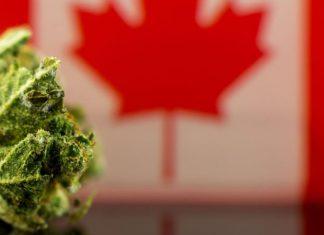 cannabis Saskatchewan