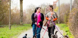 6 Quick Steps for a Dog Walking Startup