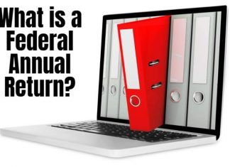 what is a federal annual return