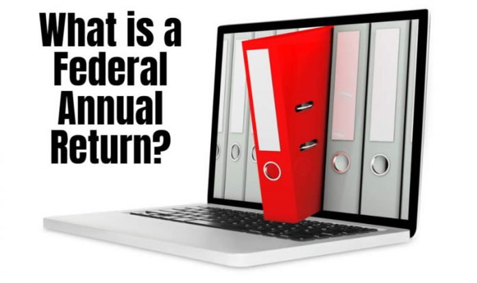 what is a federal annual return
