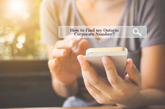 finding your ontario corporation number